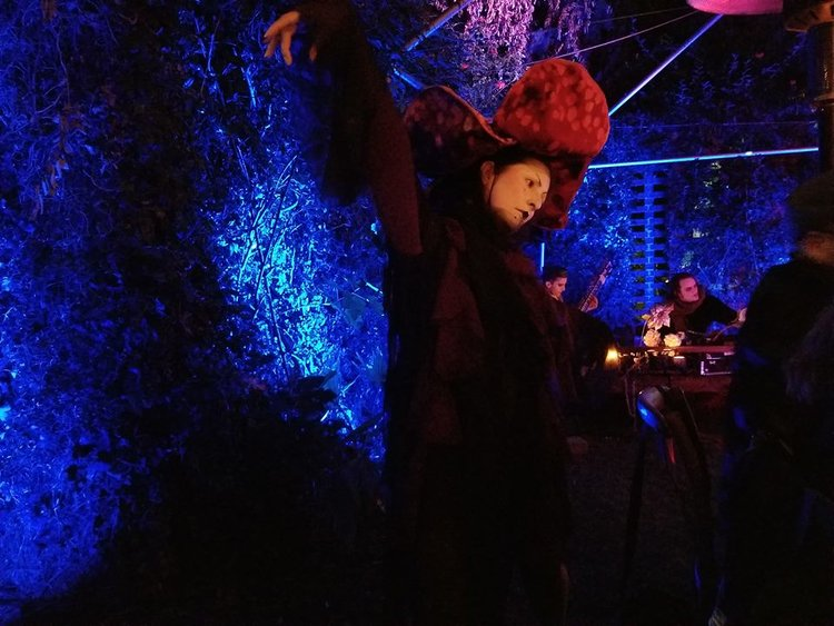 Event Recap: Disco Dining Club & The Grim Wreather Presnts THE FLOWERING OF THE STRANGE ORCHID