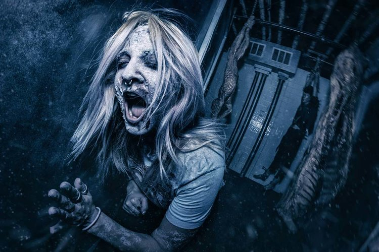 Haunt Review: THE HAUNTED HOTEL, THE HAUNTED TRAIL, SCREAMZONE (2018)