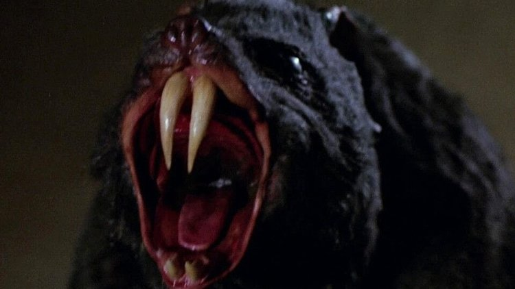 Alamo Drafthouse Terror Tuesdays Review: DEADLY EYES (1982)