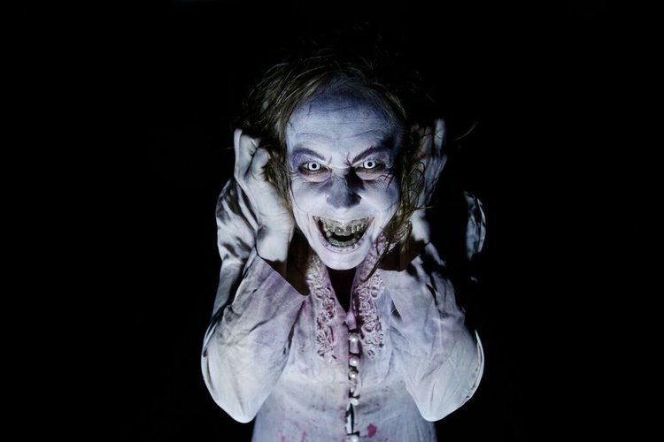Haunt Review: Scarehouse (2018)