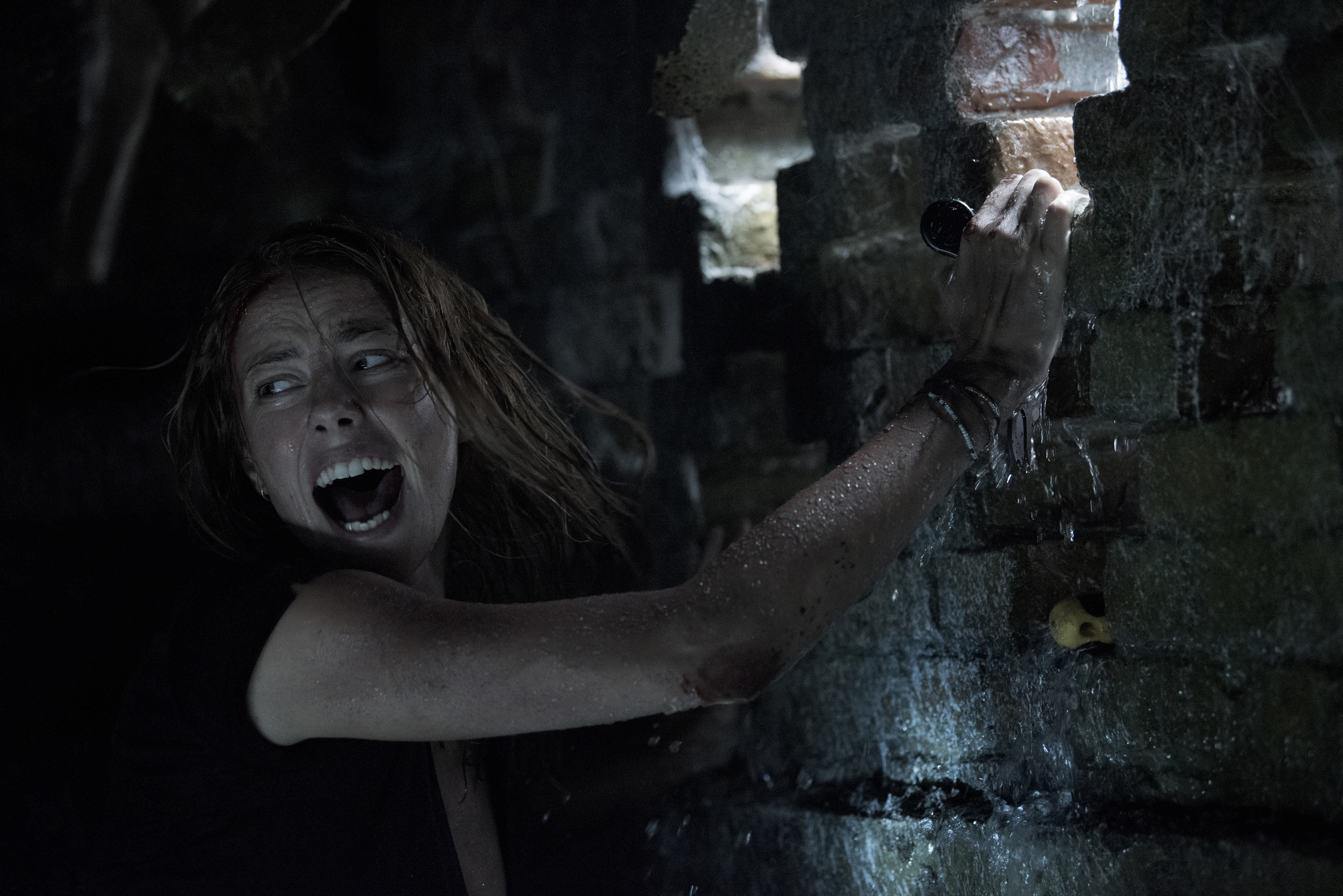 [News] Unimaginable Danger Lurks in the Water in the Trailer for CRAWL