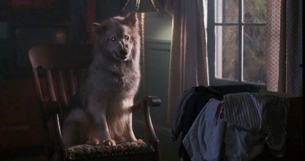 [News] PET SEMATARY TWO Collector's Blu-Ray Arriving This February