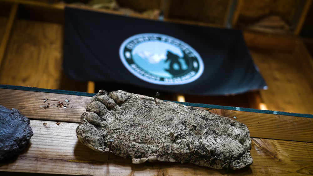 [News] ON THE TRAIL OF BIGFOOT: THE DISCOVERY Takes Small Town Monsters to Pacific Northwest
